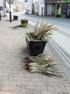 Vandalised planters West St