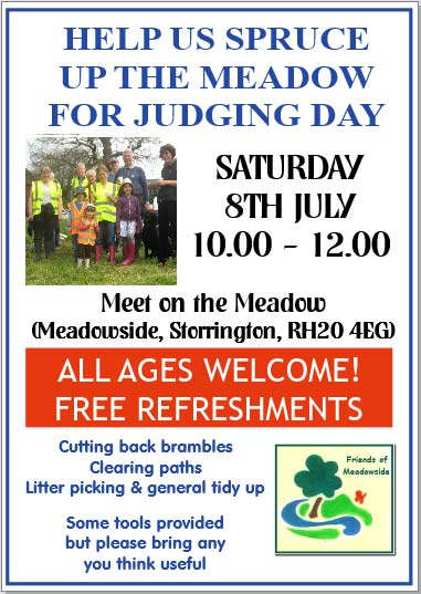 Help Friends of Meadowside spruce up the meadow @ Storrington | England | United Kingdom