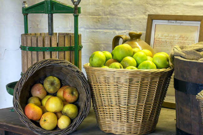 Parham House - Apples in the Orchard @ England | United Kingdom