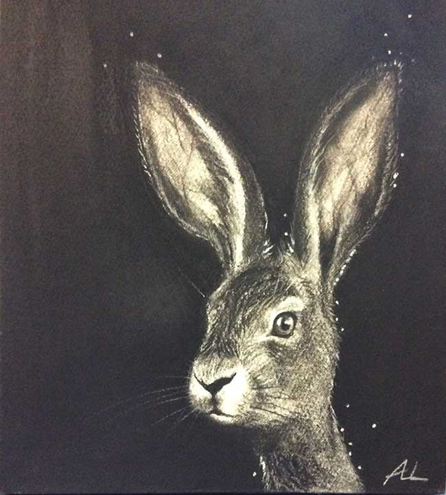 Velvet Hare showcase Art In Charcoal