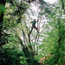 Sandgate Conservation Society Talk - Ancient Trees @ Sullington Parish Hall | Storrington | United Kingdom