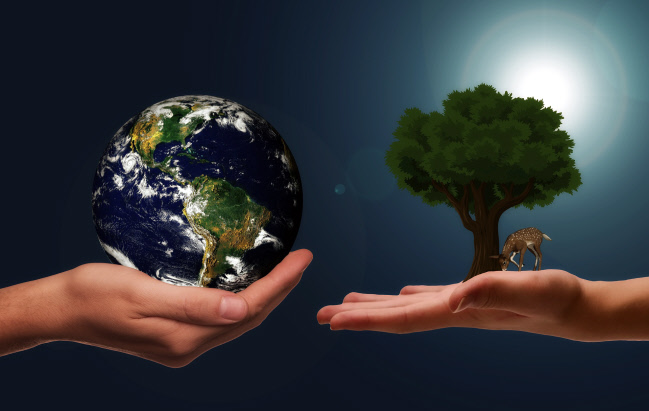Hands holding Earth and tree