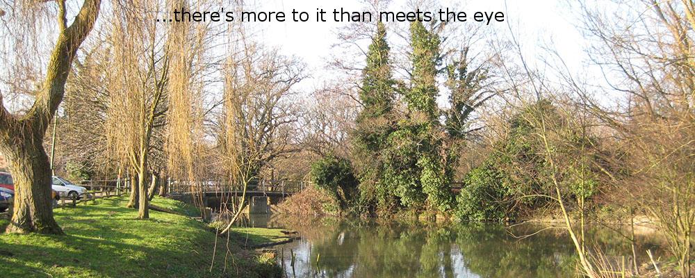 Storrington Mill Pond